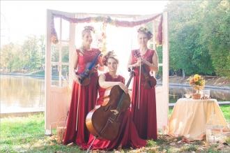 музыканты на праздник