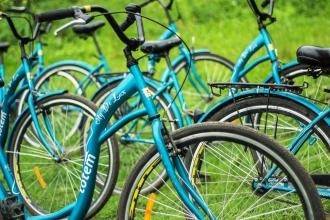 велобайдарки в Калининграде